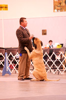 RMMF2015SpecialtyShowProofsbyBSPhotography-3689